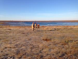 Hunting the prairie.