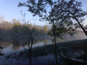 Morning fog, Twin Pines.